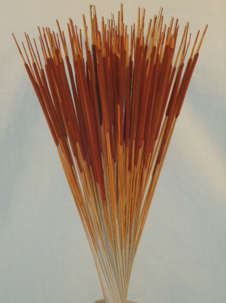 CATTAIL PENCIL- BROWN